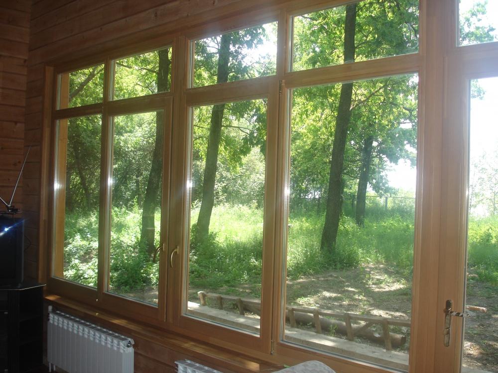 самшит окна